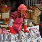 Korea 2010 Busan Fishmarket 01 150x150 The People and Produce of Jagalchi Fish Market in Busan