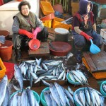 Korea 2010 Busan Fishmarket 02 150x150 The People and Produce of Jagalchi Fish Market in Busan