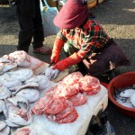 Korea 2010 Busan Fishmarket 03 150x150 The People and Produce of Jagalchi Fish Market in Busan