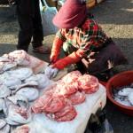 Korea 2010 Busan Fishmarket 03 150x150 The People and Produce of Jagalchi Fish Market in Busan