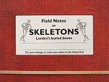 gg_wt_skeletons_02.jpg